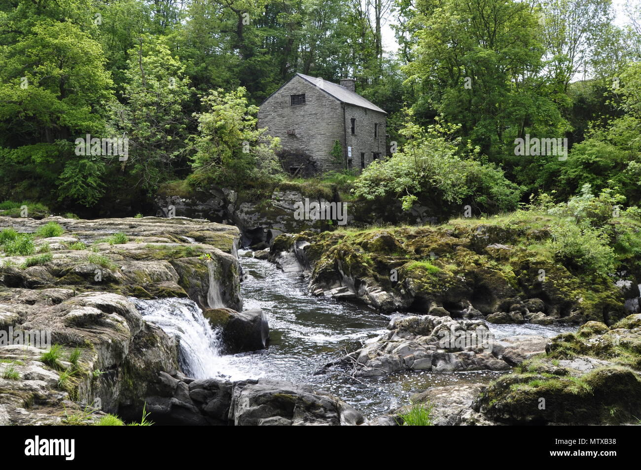 Cenarth watermill on the River Teifi e Stock Photo