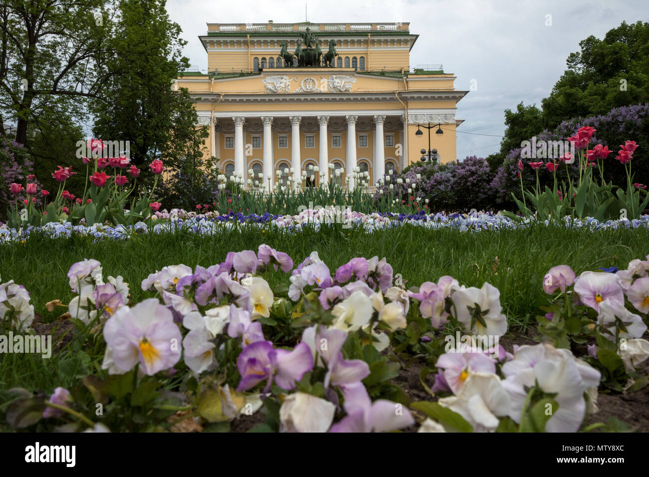 Flowerbed on Ostrovsky Square and the facade of the Alexandrinsky Theater in the city center of St. Petersburg, Russia - Stock Image