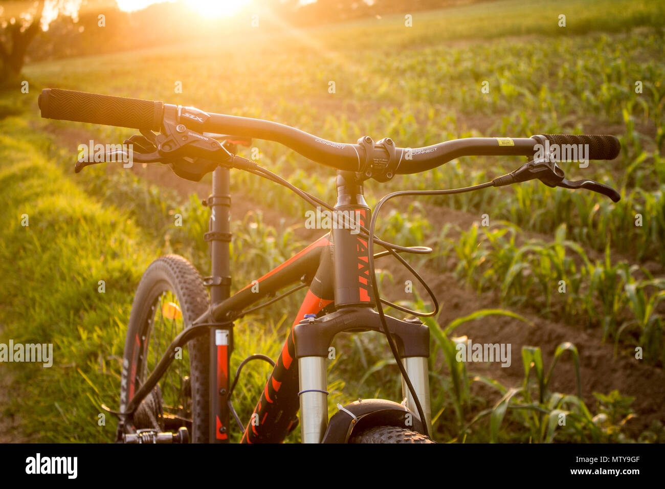 Tlaxcala, Mexico - May 27.2018. Giant and shimano are two of the largest manufacturing companies in the bicycle manufacturer industry - Stock Image