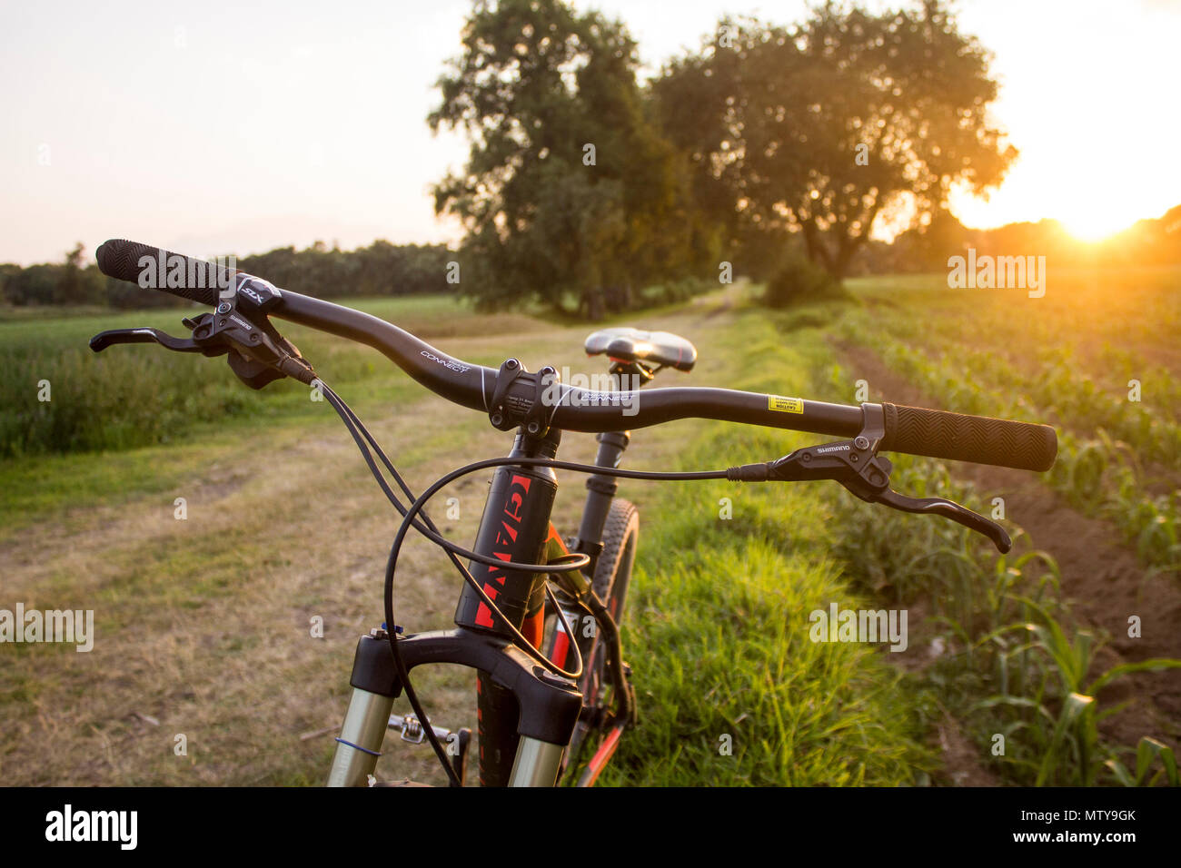 Tlaxcala, Mexico - May 27.2018. Giant is a Taiwanese and shimano a japanese companies, widely considered as the largest companies in the cycling indus - Stock Image