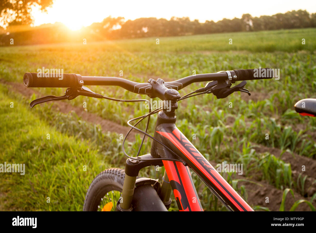 Tlaxcala, Mexico - May 27.2018. Giant is a Taiwanese bicycle manufacturer that is recognized as the world's largest bicycle manufacturer - Stock Image