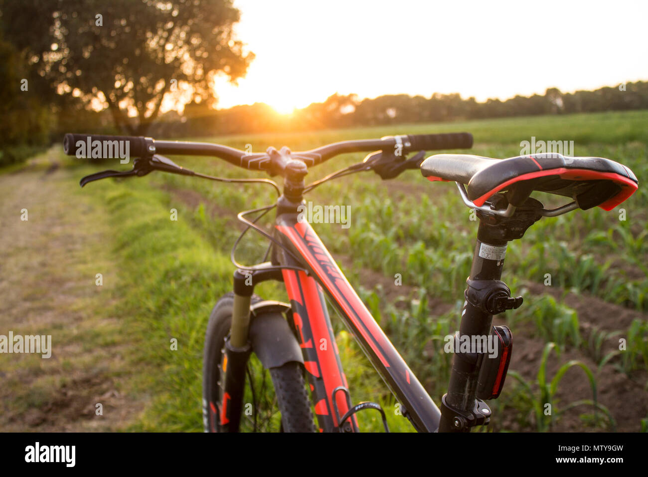 Tlaxcala, Mexico - May 27.2018. Giant Manufacturing Co. Ltd. (commonly known as Giant) is a Taiwanese bicycle manufacturer that is recognized as the w - Stock Image