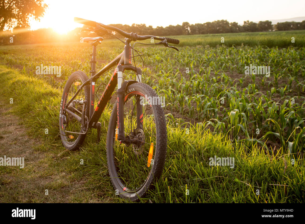 Tlaxcala, Mexico - May 27.2018. The Giant Talon is manufactured by the a Taiwanese company Giant,  that is recognized as the world's largest bicycle m - Stock Image