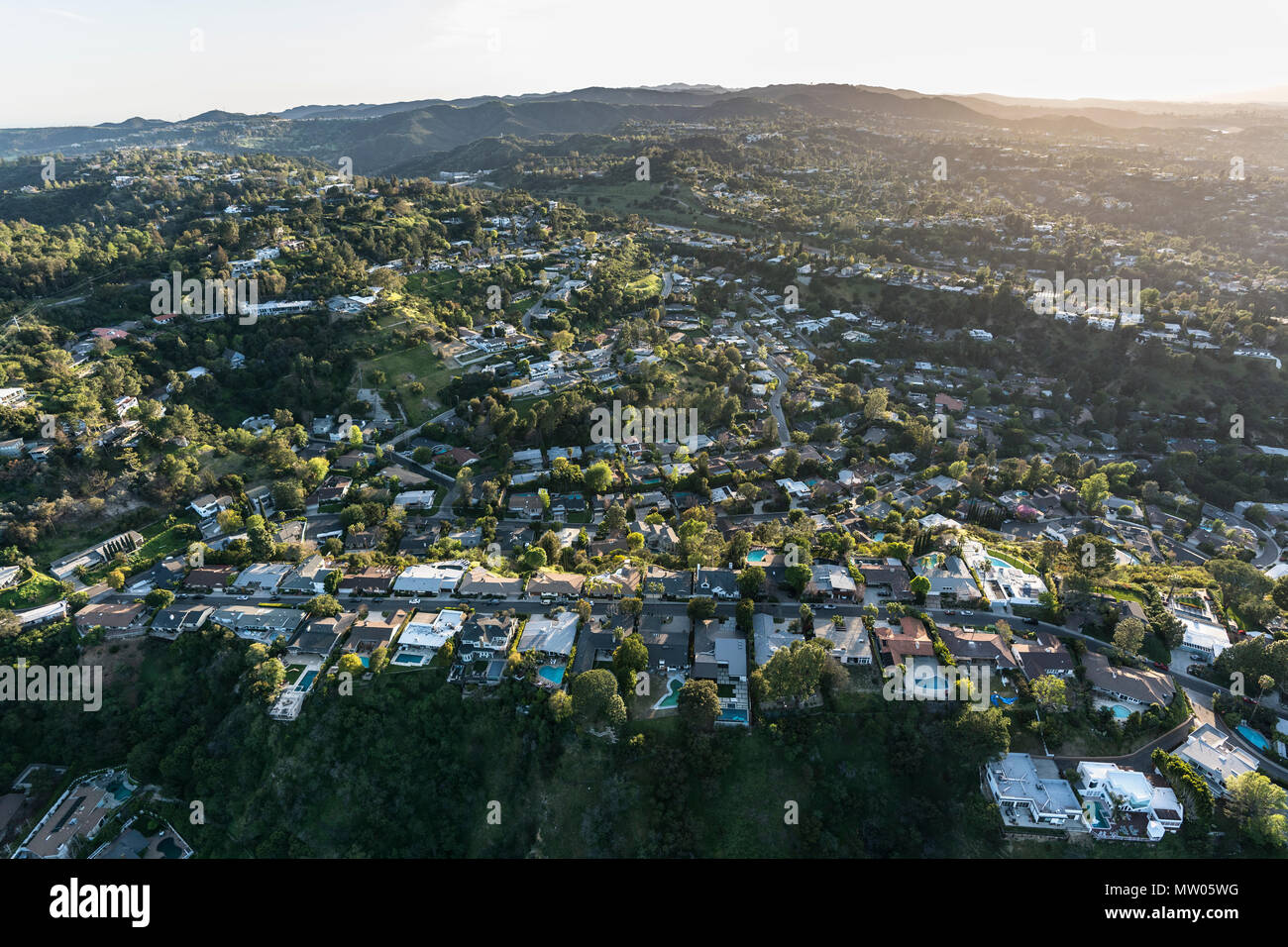 Aerial view of canyon and hillside homes above Beverly Hills