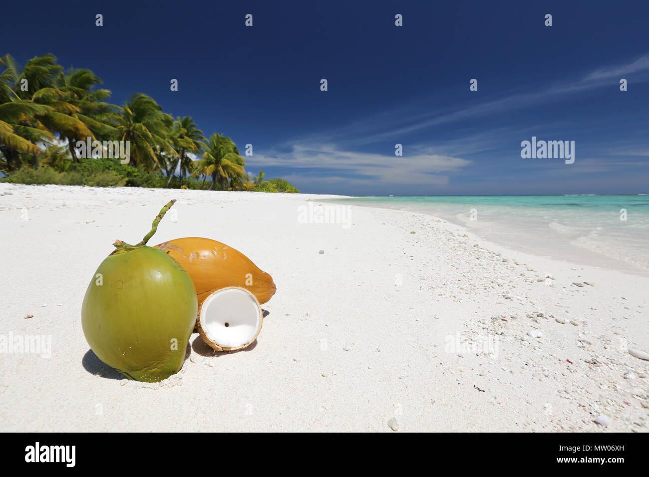 Pristine remote coco palm beach, Christmas Island, Kiribati Stock ...