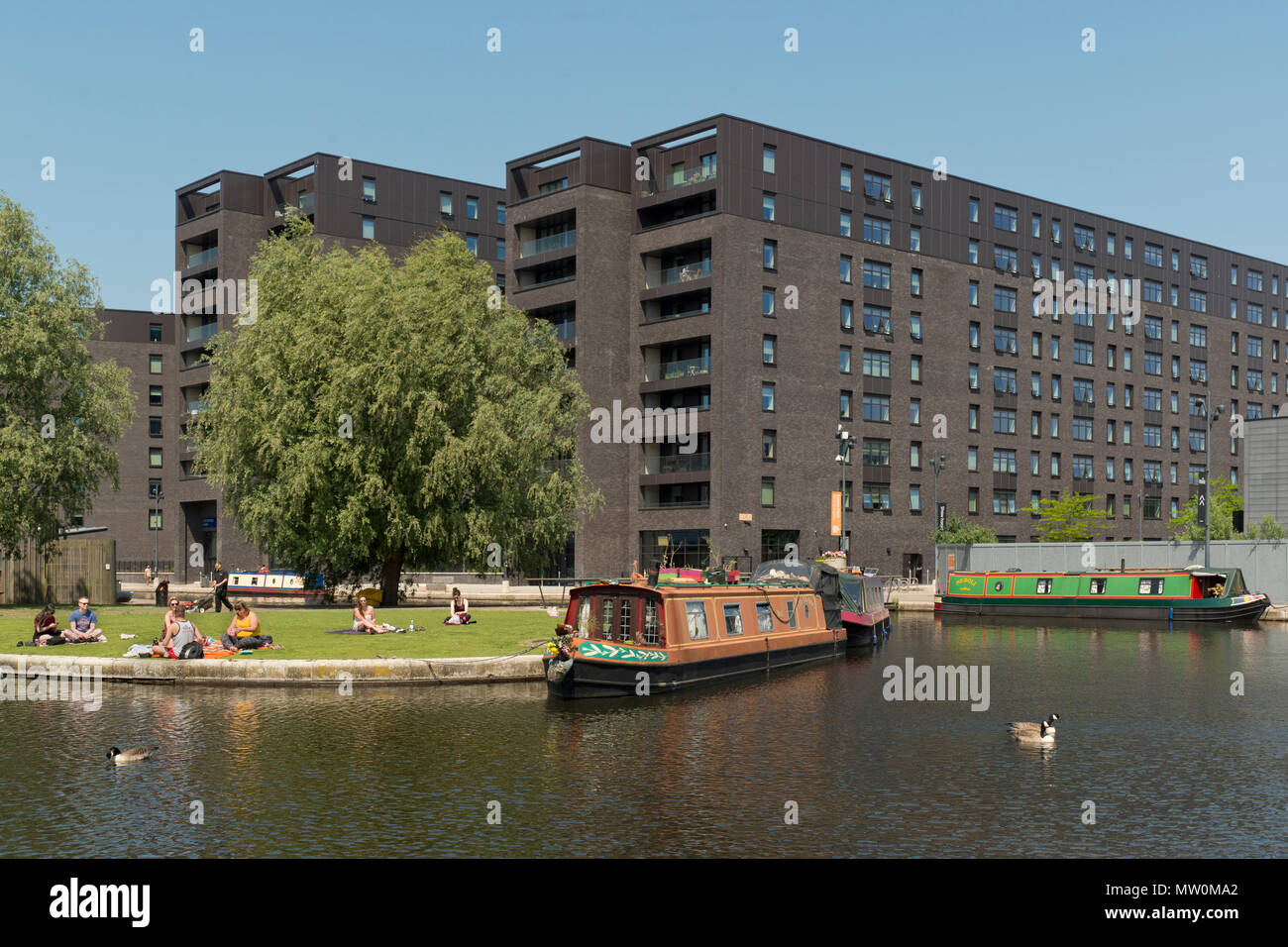 The industrial suburb of New Islington following an extensive regeneration project located in Ancoats, Manchester, UK. - Stock Image