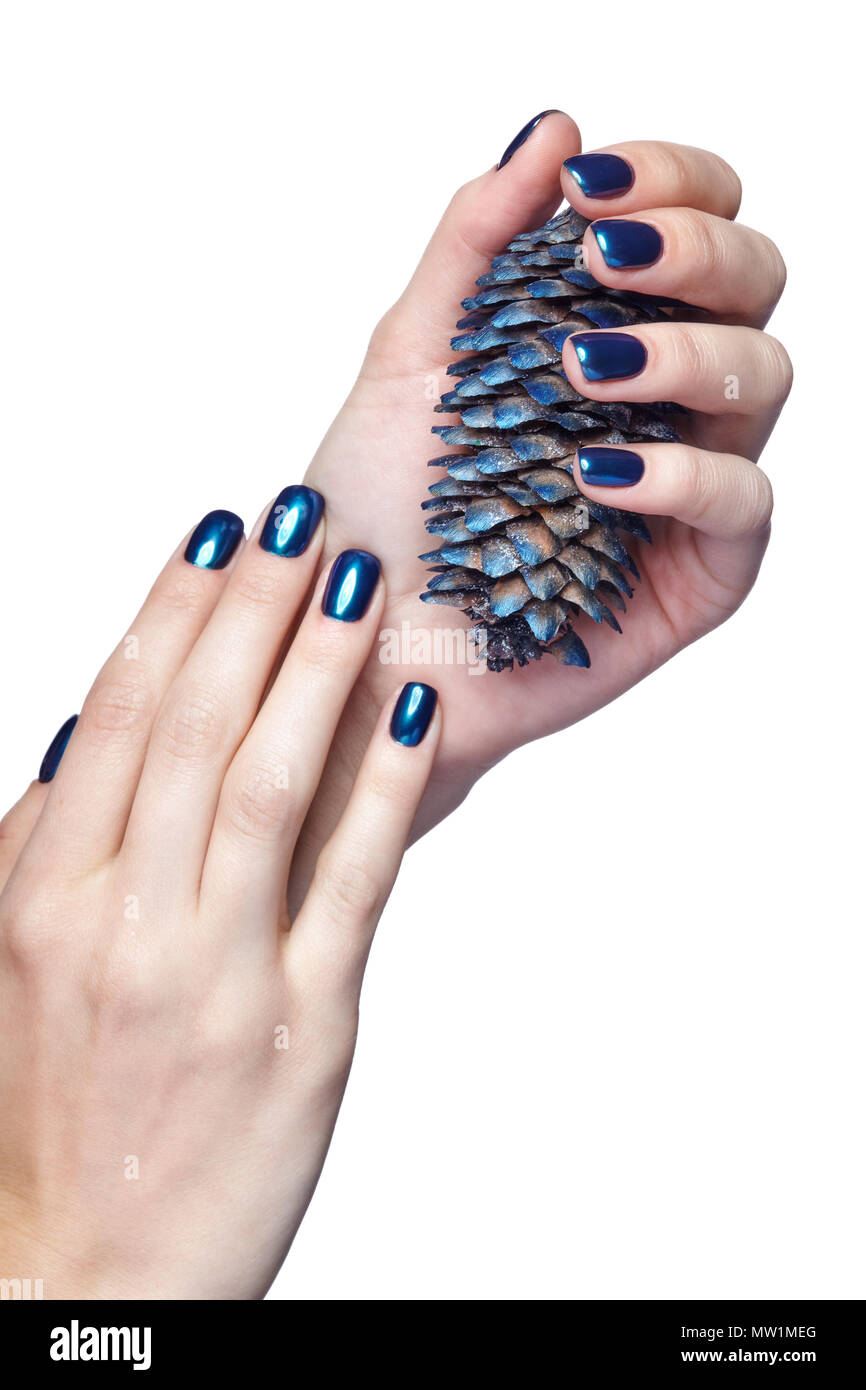 woman is holding blue christmas fir cone female fingers with shiny blue nails manicure girls hands isolated on white background - Blue Christmas Nails