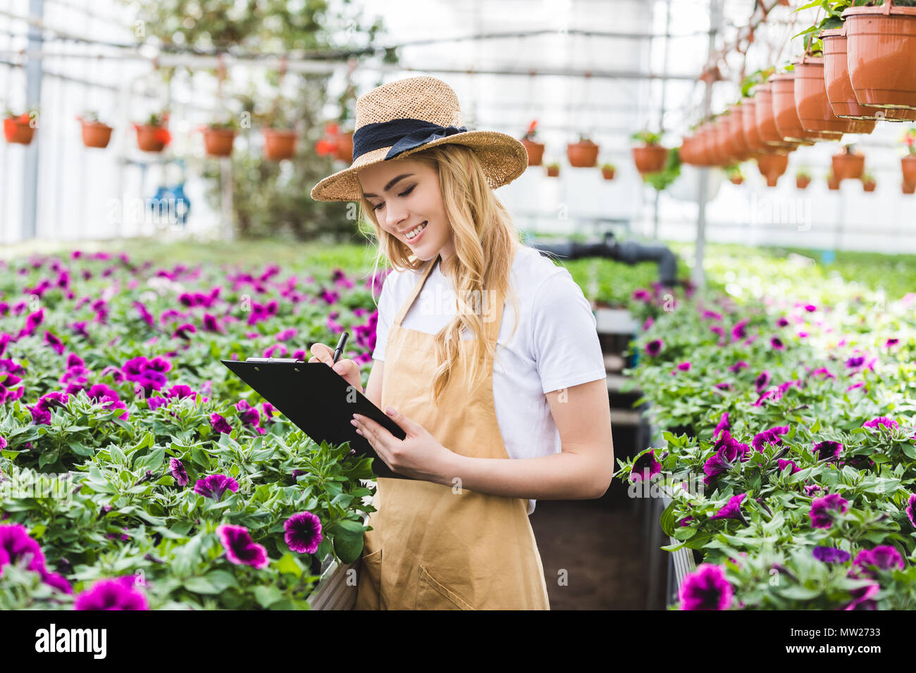 Young female owner of glasshouse with clipboard filling order of flowers - Stock Image