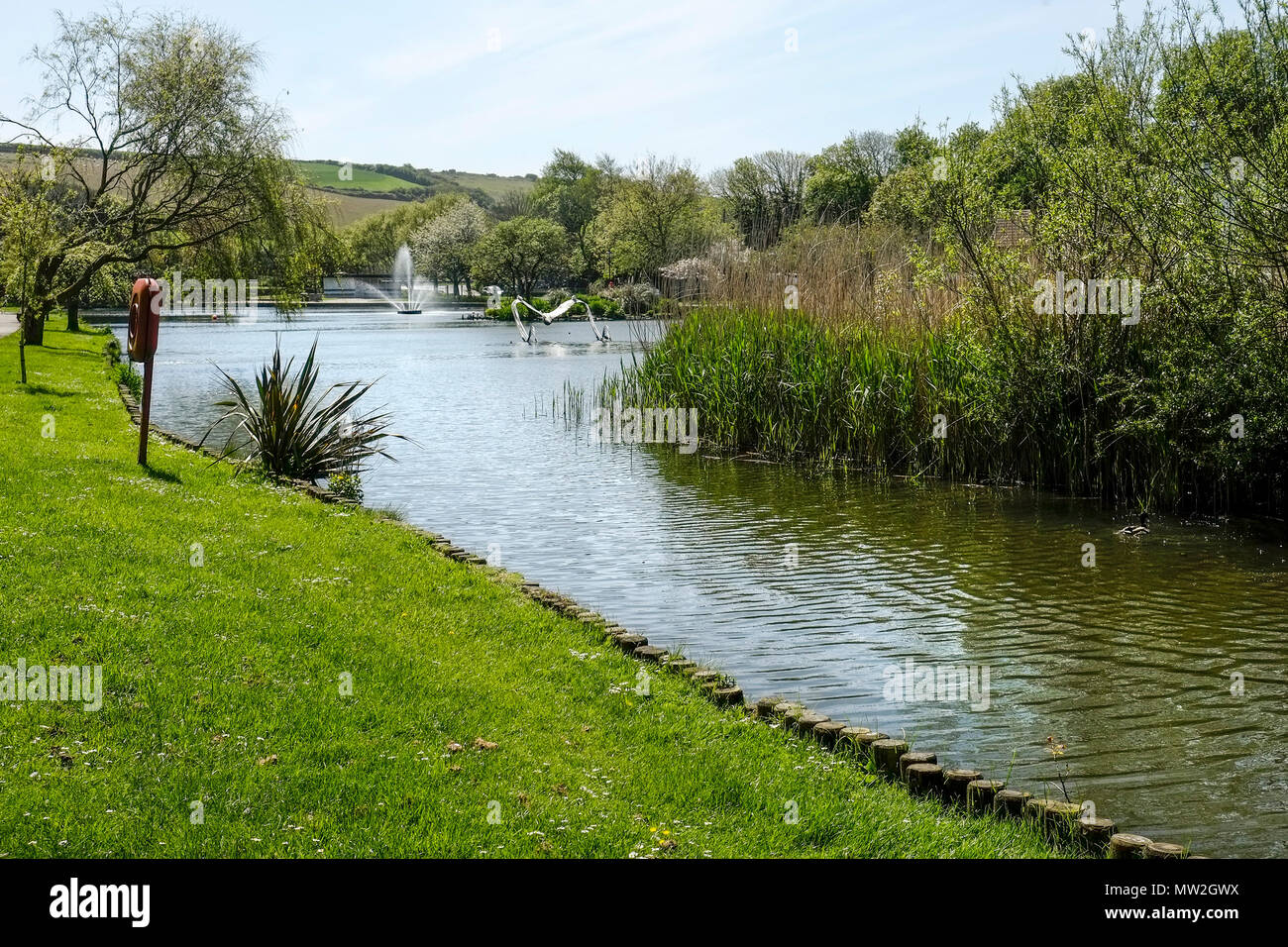 Trenance Boating Lake in Trenance Park in Newquay in Cornwall. - Stock Image