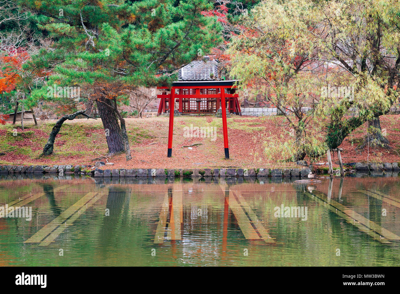 Torii gate with autumn maple at Todai-ji temple in Nara, Japan - Stock Image