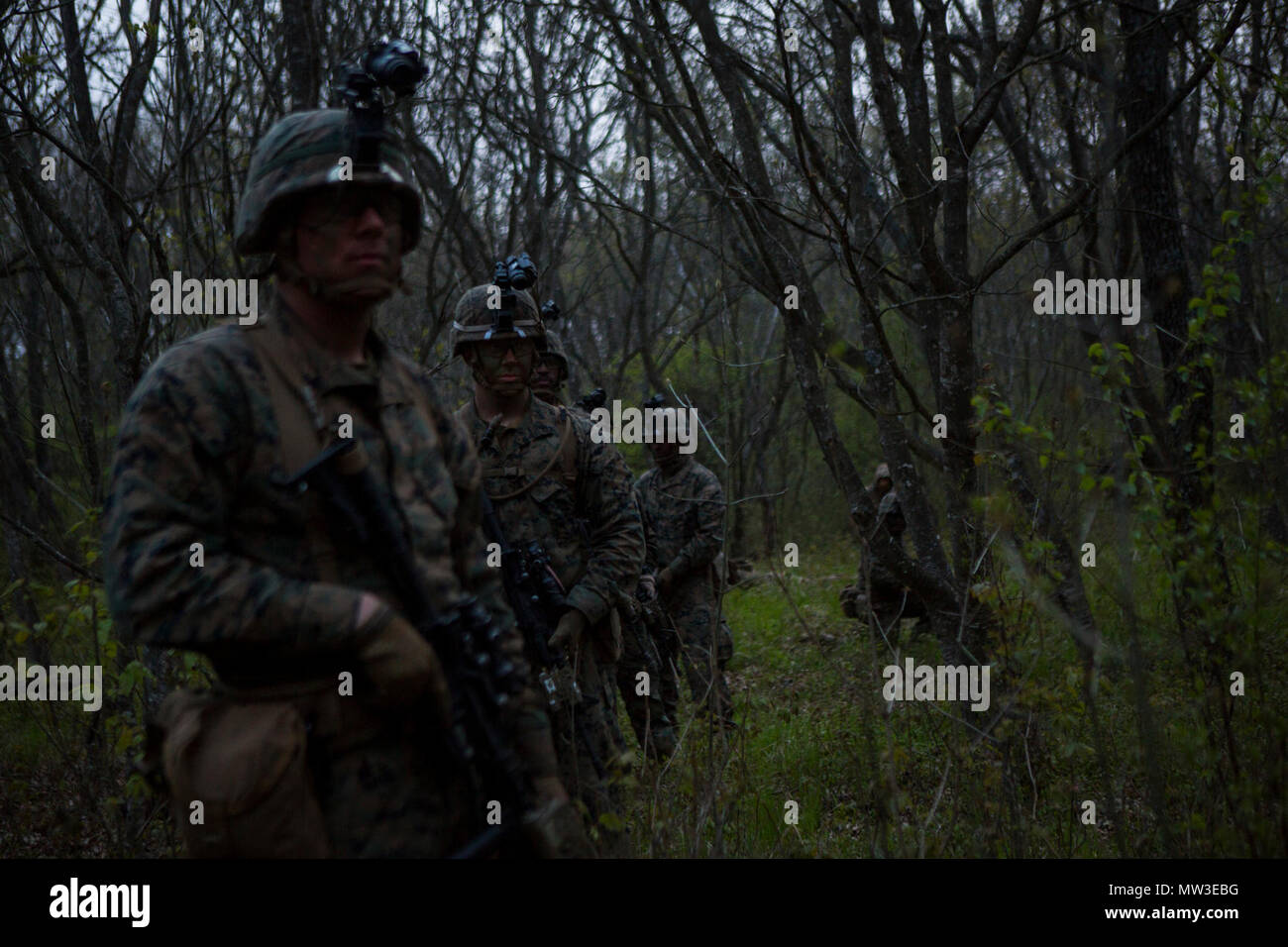 U.S. Marines with Black Sea Rotational Force (BSRF) 17.1 patrol during Exercise Platinum Eagle 17.2 at Babadag Training Area, Romania, April 27, 2017. Marines conducted patrol-based exercises to improve on skills with night vision optics through various terrains. With its flexibility and versatility, BSRF is ideally suited to carry out security cooperation efforts and a wide range of other missions in the European reigon. Stock Photo