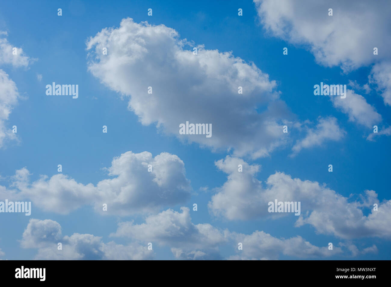 Fresh white clouds against blue sky - Stock Image