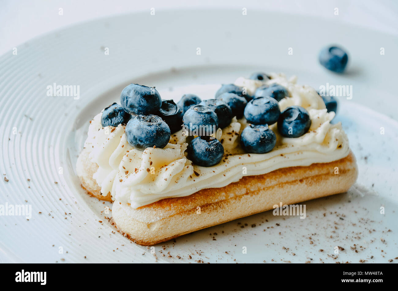 Nontraditional blueberry tiramisu with fresh berries. White background, copy space. - Stock Image