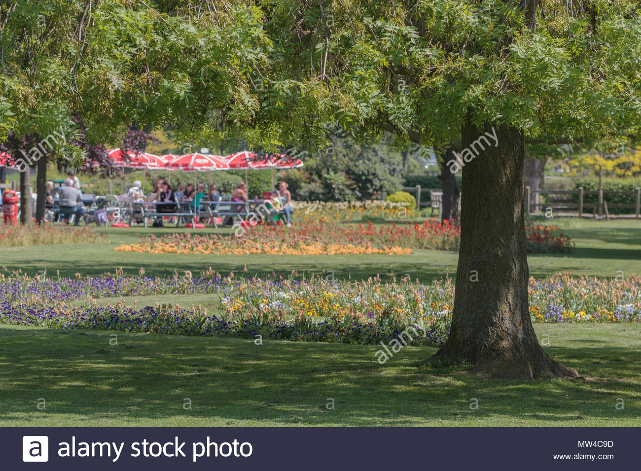 Southchurch Park in Essex UK on a sunny spring day. - Stock Image
