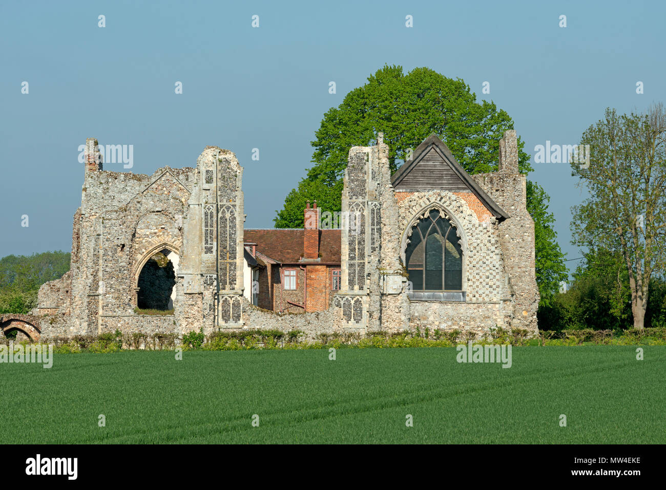 Leiston Abbey Suffolk UK - Stock Image
