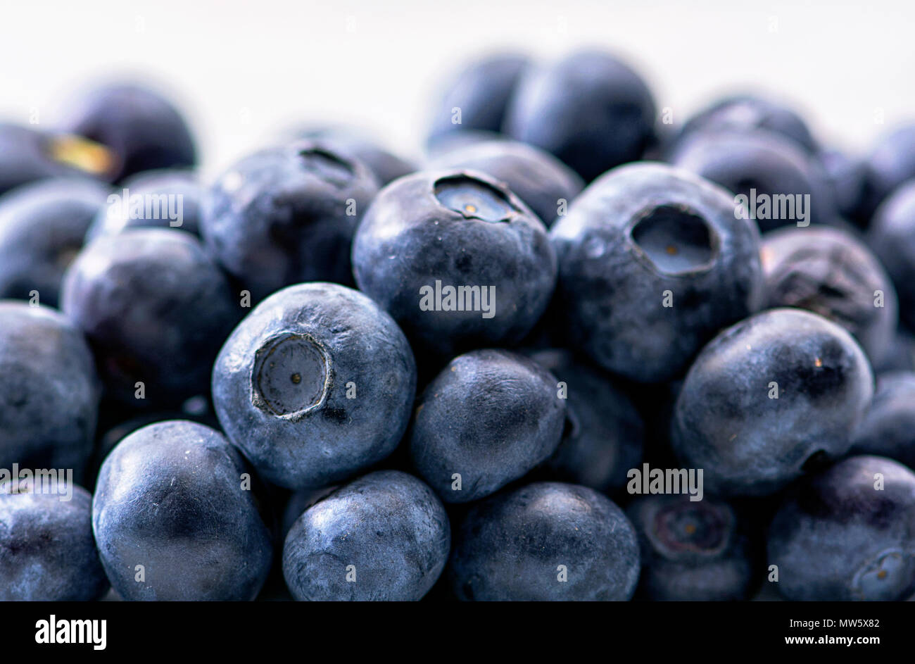 Bunch of tasty, juicy, fresh and healthy blueberries against white background - Stock Image