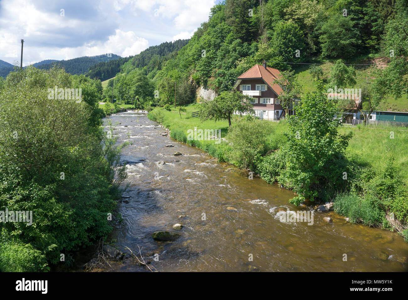 Black forest houses at Gutach river, village Gutach, Black Forest, Baden-Wuerttemberg, Germany, Europe - Stock Image