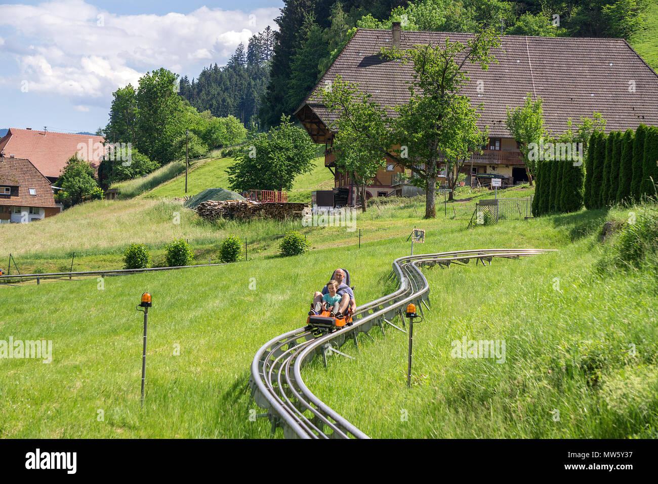 Sommerrodelbahn in Gutach, Schwarzwald, Baden-Wuerttemberg, Deutschland, Europa | Dry toboggan run at the village Gutach, Black Forest, Baden-Wuerttem - Stock Image