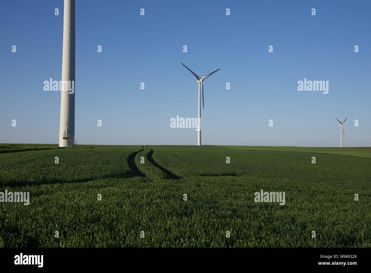 Wind turbines: a group of three wind turbines amongst a farmers growing - Stock Image