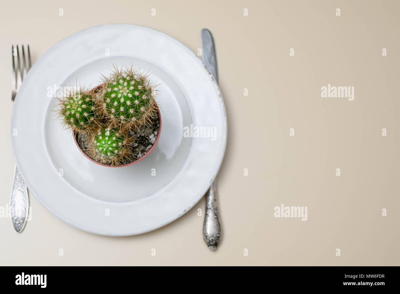 Unhealthy food concept. Heartburn, gastritis, an ulcer from harmful food. Cactus on a plate on a light background. - Stock Image