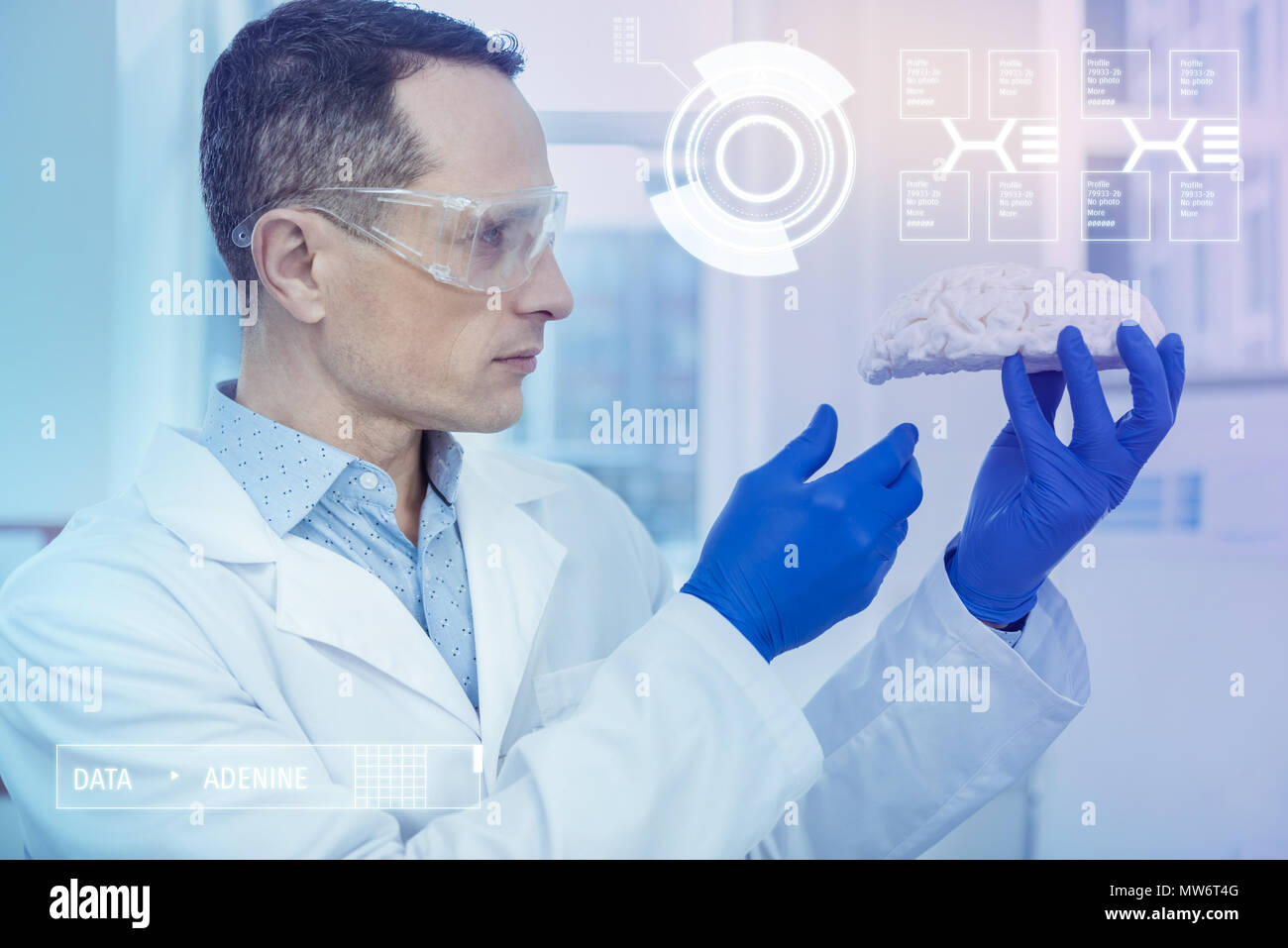 Serious biologist frowning while looking at the model of human brain - Stock Image