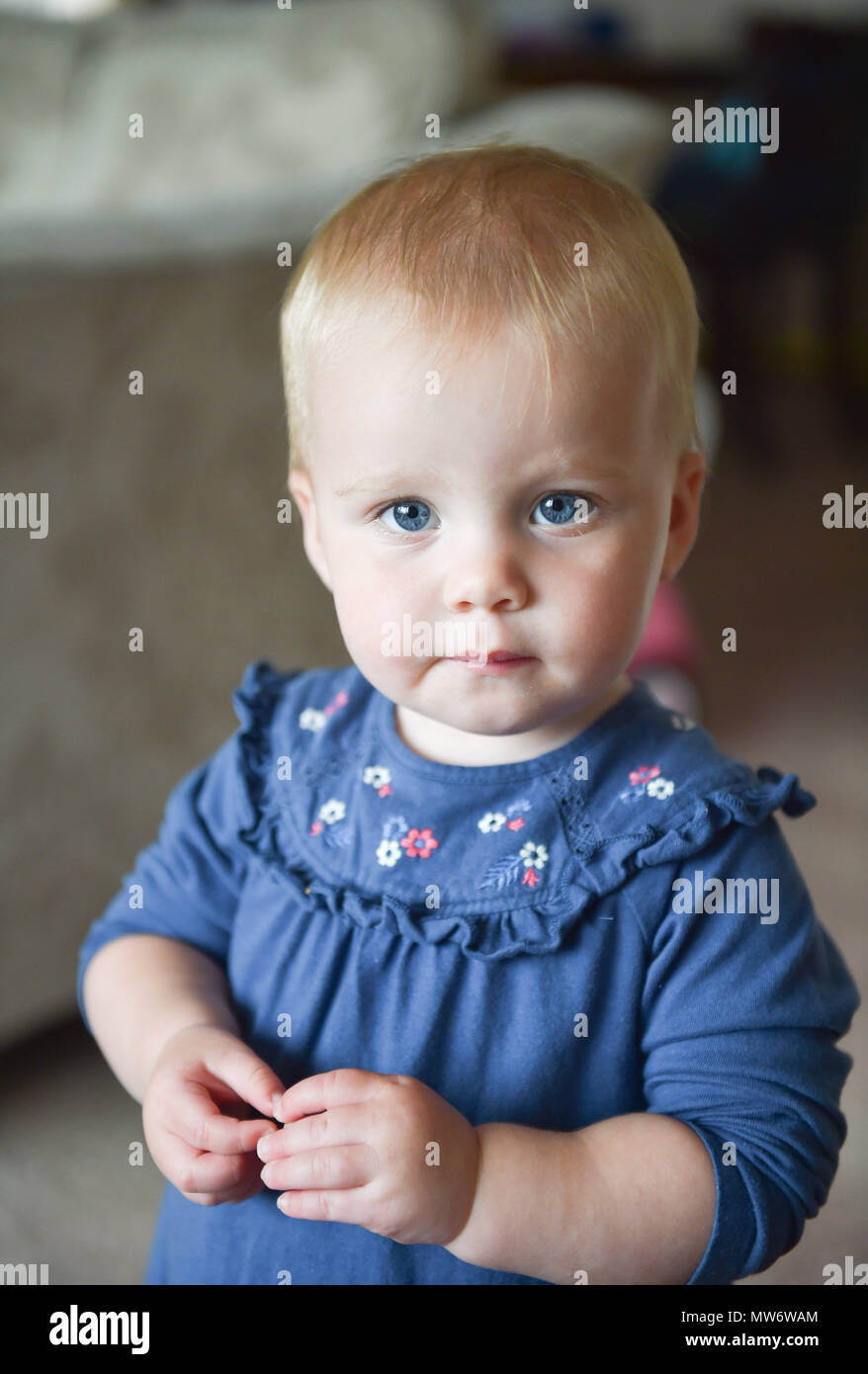 Beautiful Young baby girl toddler at 18 months old with short blonde hair - model released Photograph taken by Simon Dack