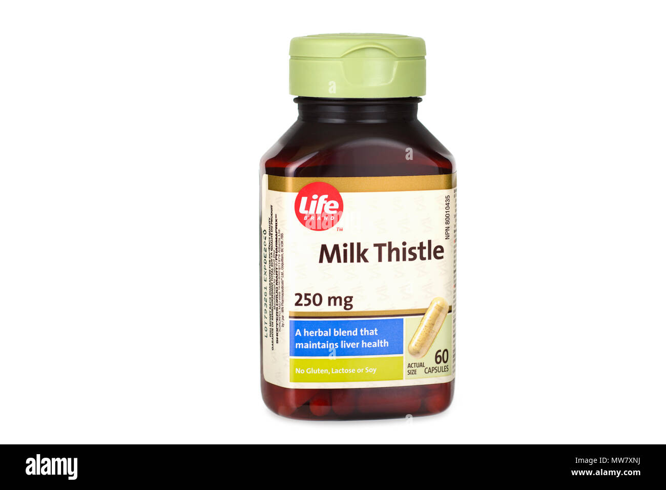 Milk Thistle Supplement, Bottle with Capsules, Tablets, Silybum, Silymarin - Stock Image