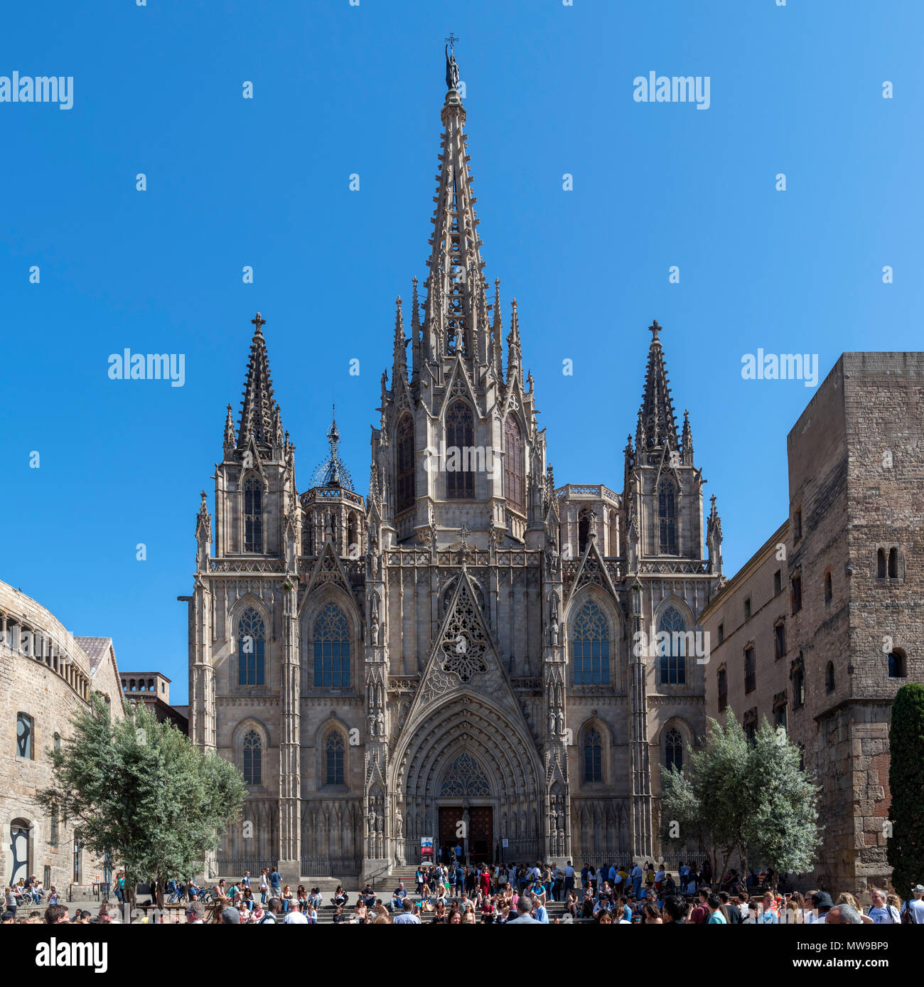 Barcelona Cathedral. The Cathedral of the Holy Cross and Saint Eulalia from Placa de la Seu, Barri Gotic, Barcelona, Spain - Stock Image