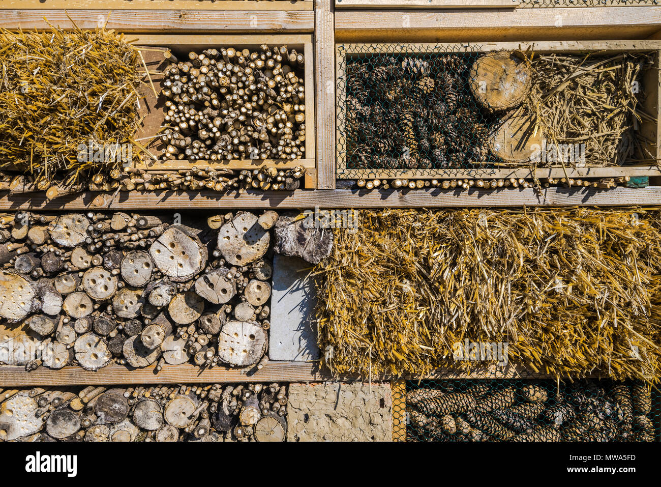 insect hotel, also for bees, construction of different natural materials, nature conservation, environmental and animal protection - Stock Image