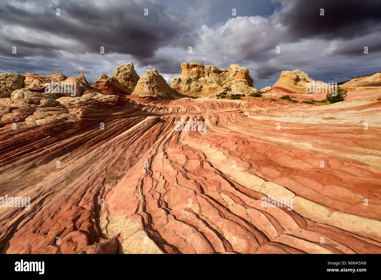 Unique and amazing rock formations in the White Pocket of the Pariah Plateau in Northern Arizona in the Vermillion Cliffs National Monument. - Stock Image