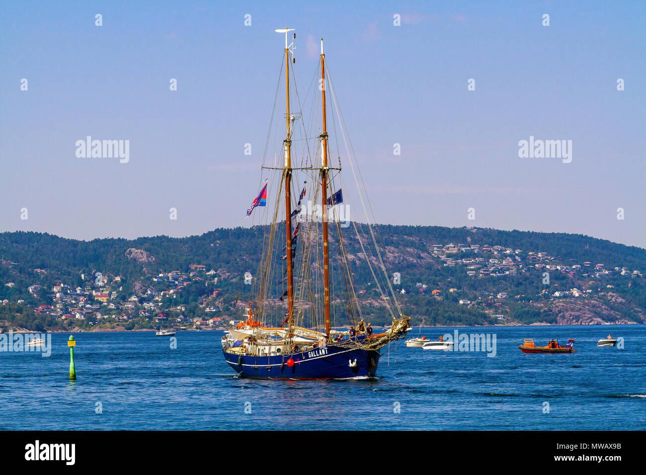 Tall Ships Race Bergen Norway 2014.  The Dutch gaff schooner 'Gallant' entering Bergen harbor from Byfjorden. - Stock Image