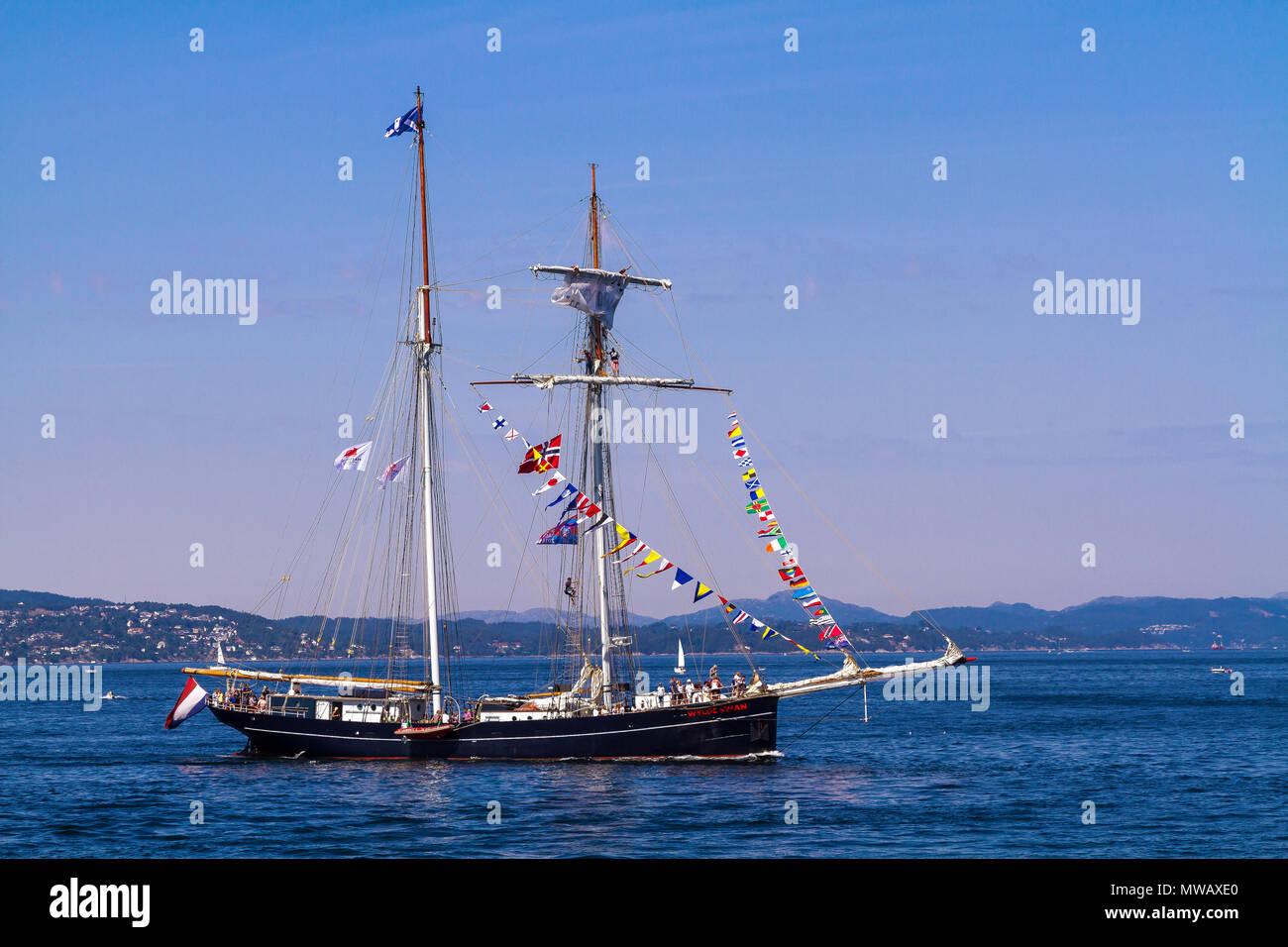 Tall Ships Race Bergen, Norway 2014. Dutch topsail schooner Wylde Swan arriving at Byfjorden, Bergen, Norway - Stock Image