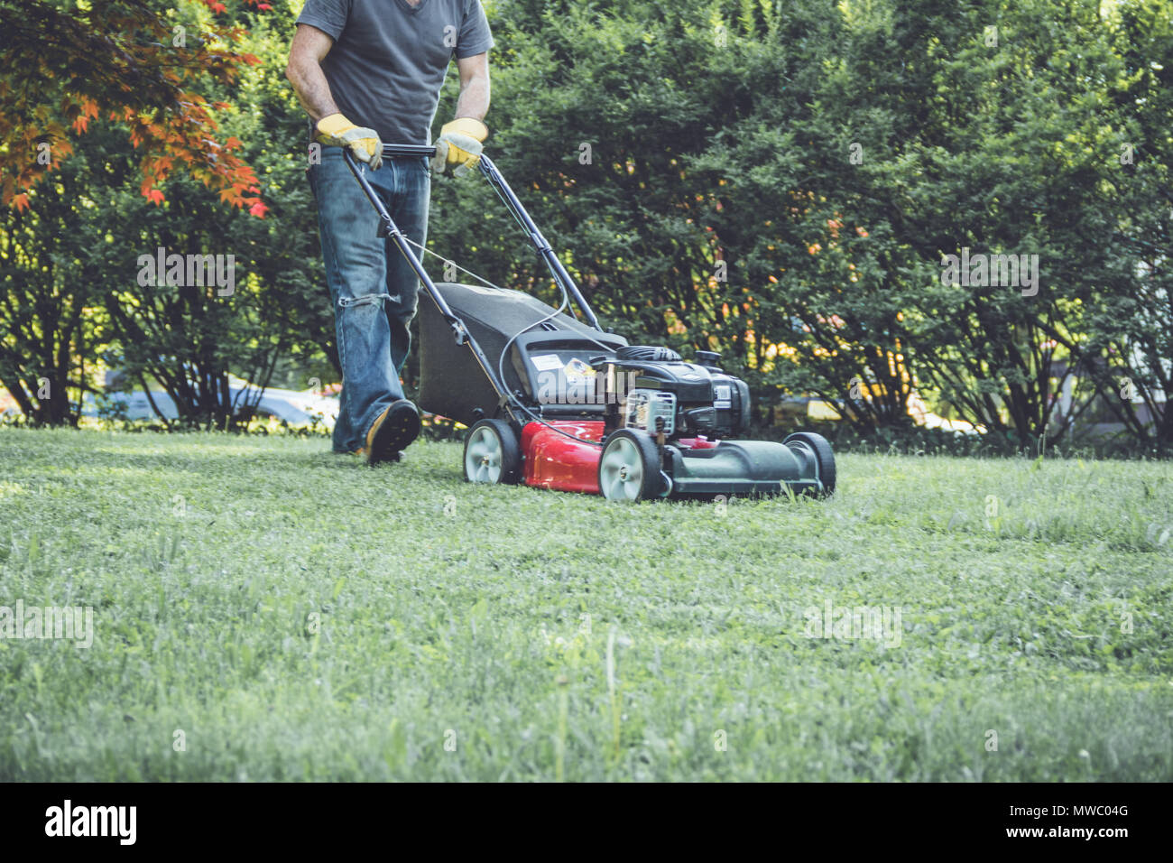 Vintage Lawn Mower Stock Photos & Vintage Lawn Mower Stock Images