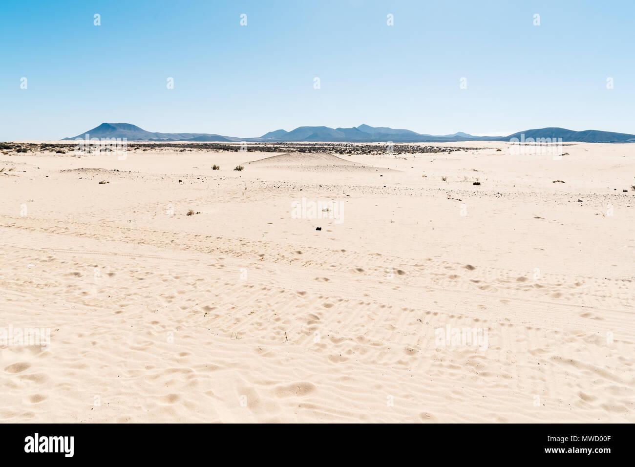 Scenic view of desert landscape. Dunes of Corralejo - Stock Image