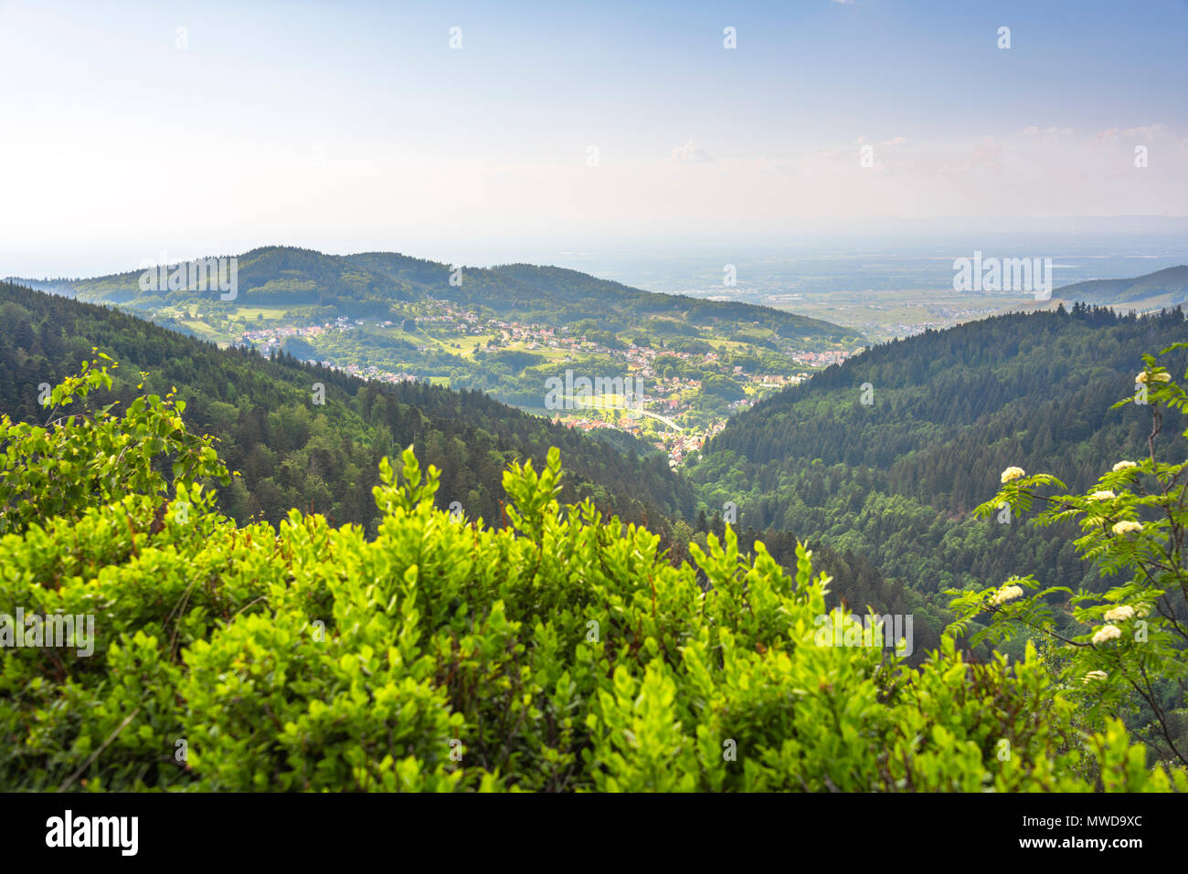 viewpoint Wiedenfelsen at the border of the Black Forest, Germany, panoramic view to the foothills and the Upper Rhine Plain - Stock Image