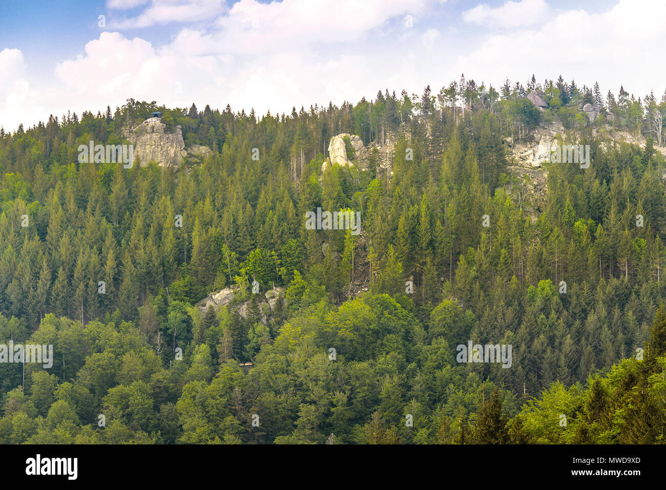 viewpoint Wiedenfelsen at the border of the Black Forest, Germany, steep crest with forest, rocks and exponated hut, Herthahütte - Stock Image