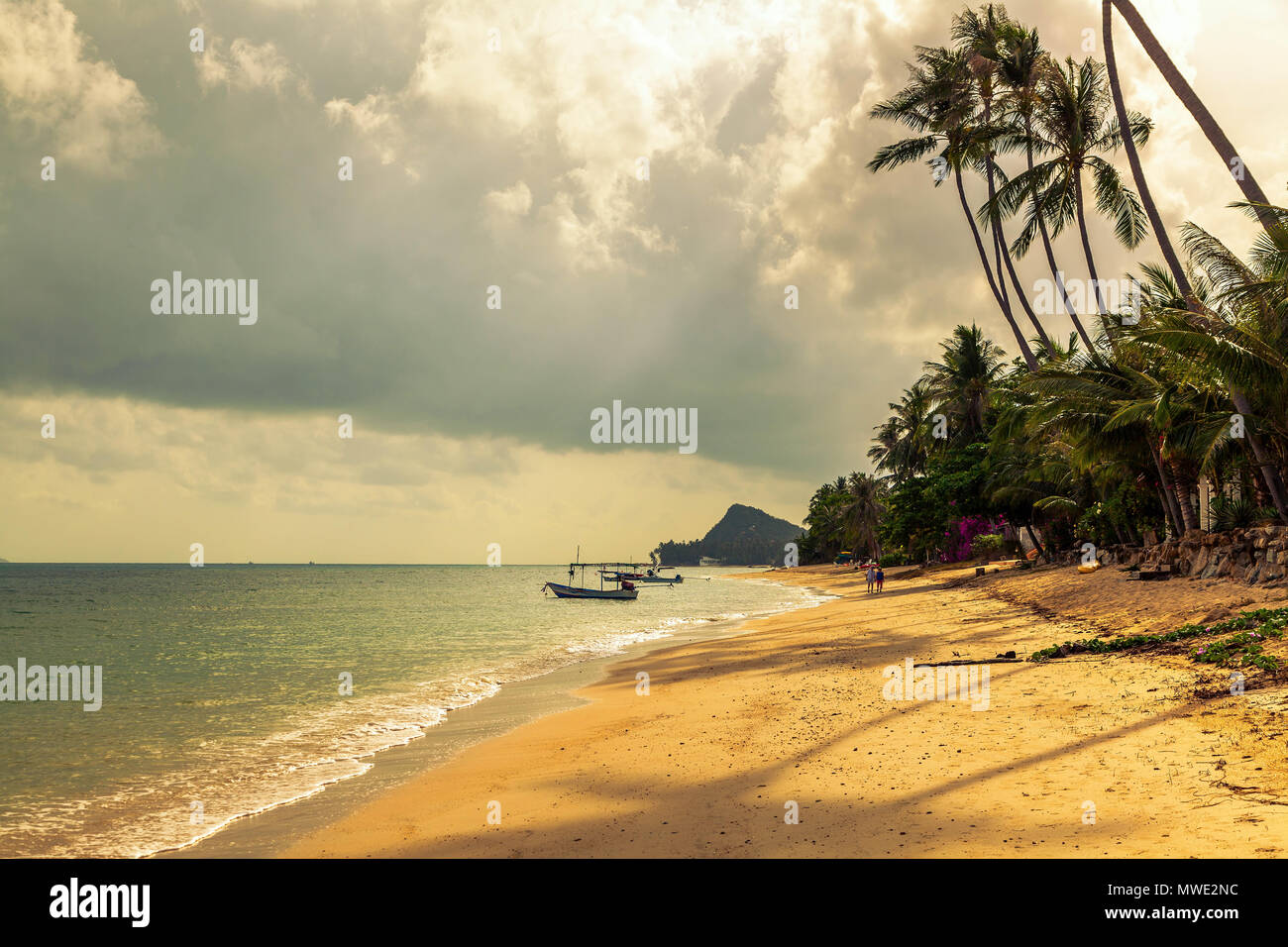 Morning on the beach of Bang Po. Samui Island. Thailand. - Stock Image