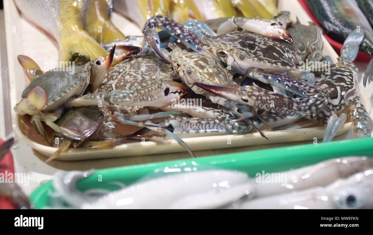 Fresh crabs in Asian market. Sale of fresh crabs fish in the Asian public store. Seafood on Market.Sea crabs lying on the shopboard at one of the street markets. Philippines. - Stock Image