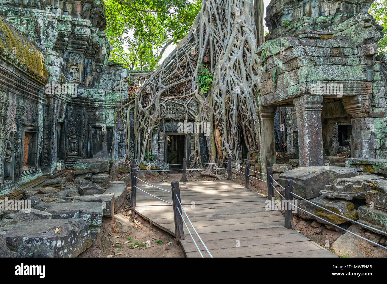 Ruins of the ancient Khmer temple of Ta Prohm. - Stock Image
