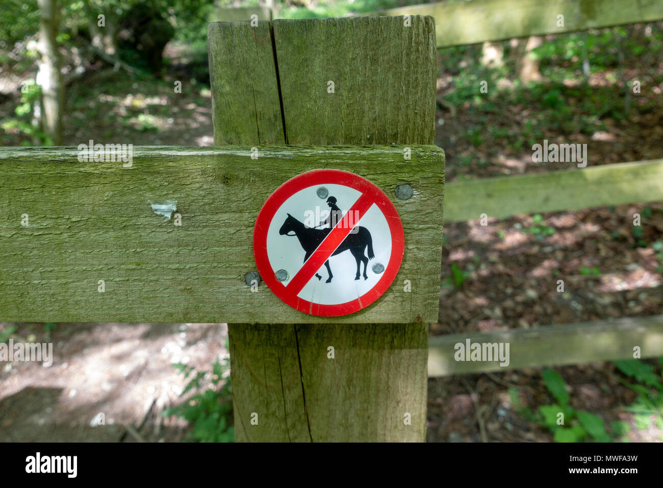 A sign indicting that horses are not allowed in the Chilterns area of natural beauty, UK - Stock Image