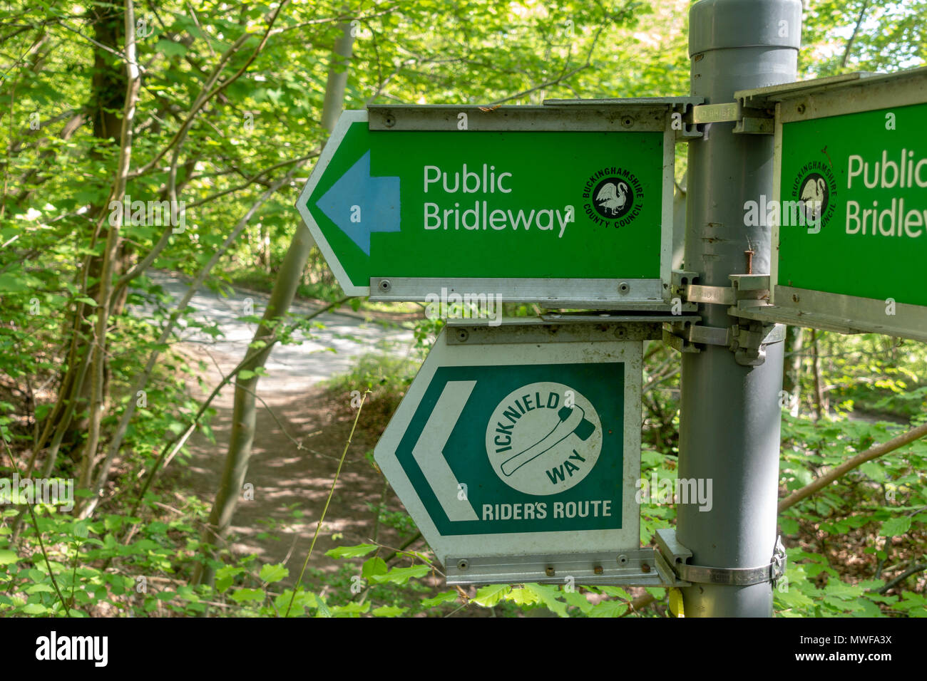A public bridleway sign and one for a Riders Route on the Icknield Way in the Chilterns area of natural beauty, UK - Stock Image