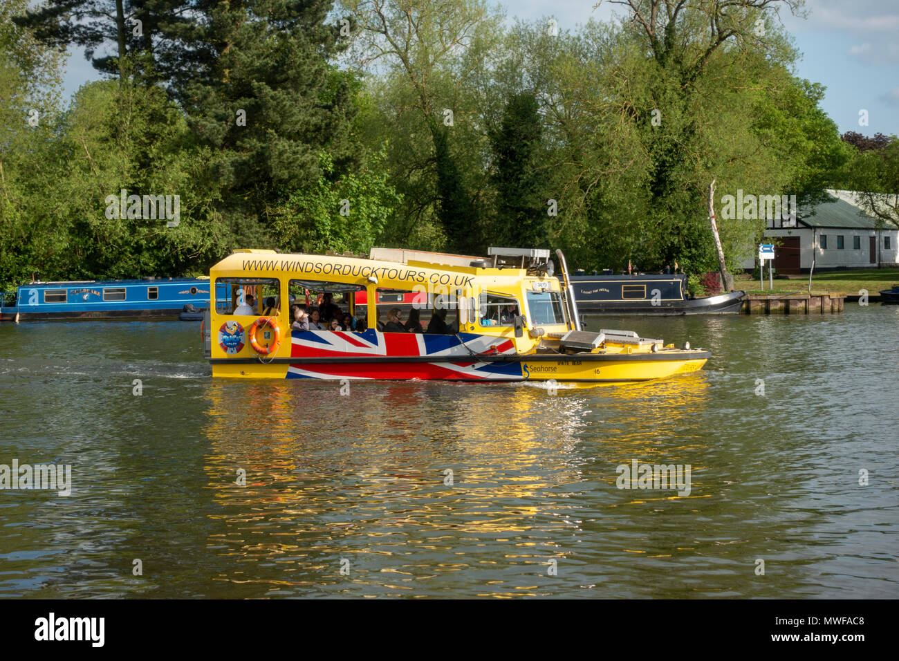 The Windsor Duck Tours 'White Bear' DUKW tour boat crusing on the  River Thames, UK. - Stock Image