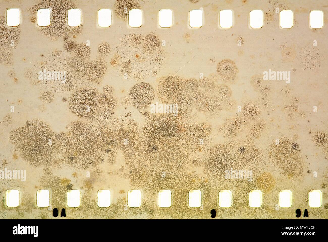Grunge dripping cracked film strip frame in sepia tones. Mossy wall surface. - Stock Image