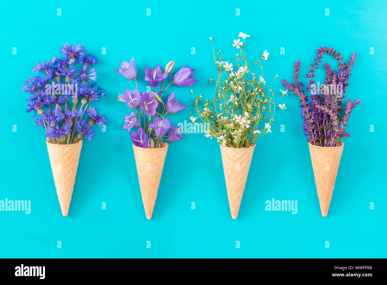 Four waffle cones with thyme, cornflower, blue bells and white flowers blossom bouquets on blue surface. Flat lay, top view floral background. - Stock Image