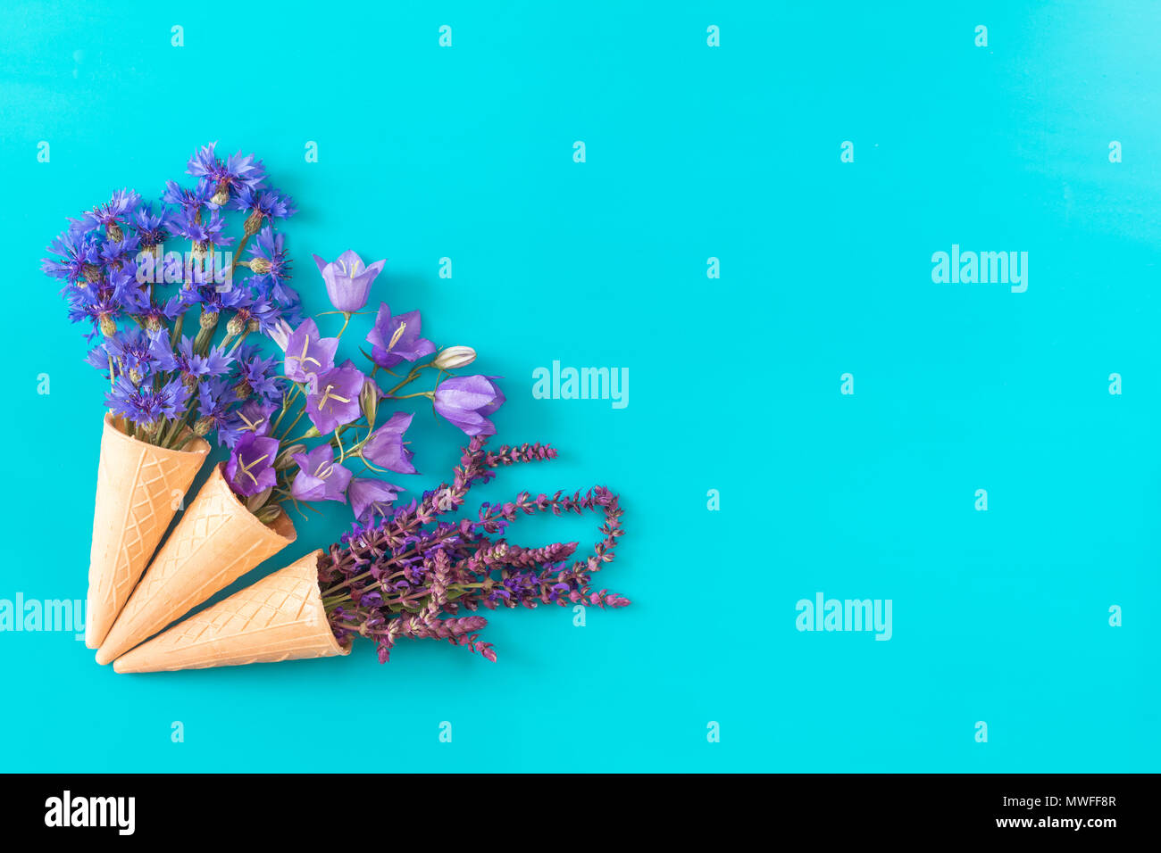 Three waffle cones with thyme, cornflower, blue bells and white flowers blossom bouquets on blue surface. Flat lay, top view floral background. - Stock Image