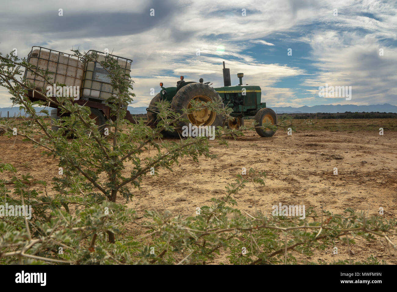 green tractor on farm through acacia bush in Oudtshoorn, on the garden route, south africa - Stock Image