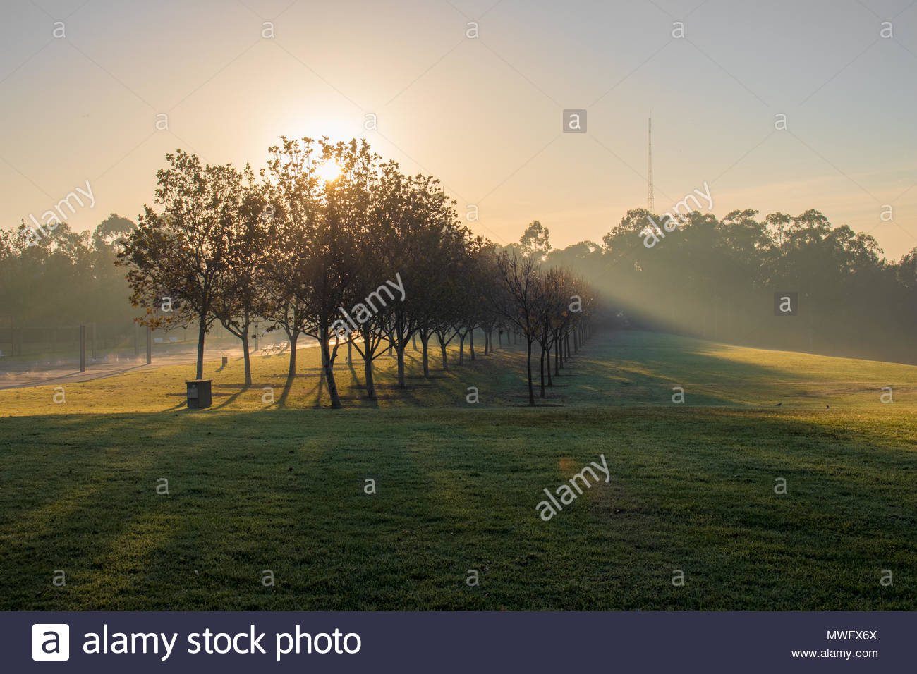 Morning glow of the sun shining through the mist - Stock Image