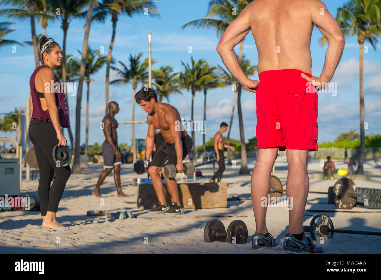 MIAMI - DECEMBER 29, 2017: Muscular young men work out in the outdoor gym known as Muscle Beach in Lummus Park. - Stock Image