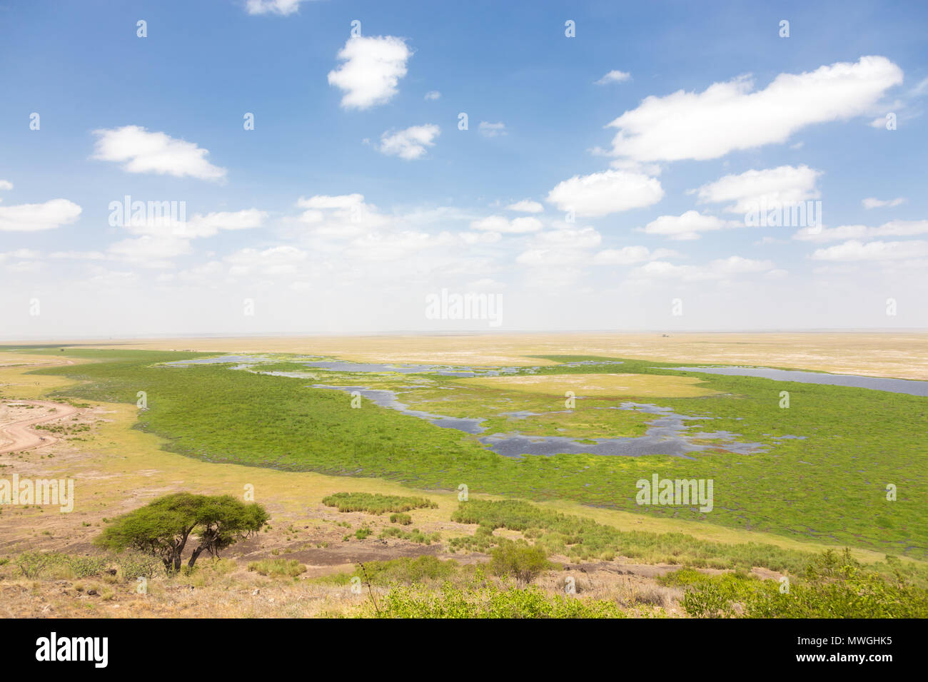 Panoramiv view of Amboseli national park, wildlife conservation area in Kenya. - Stock Image