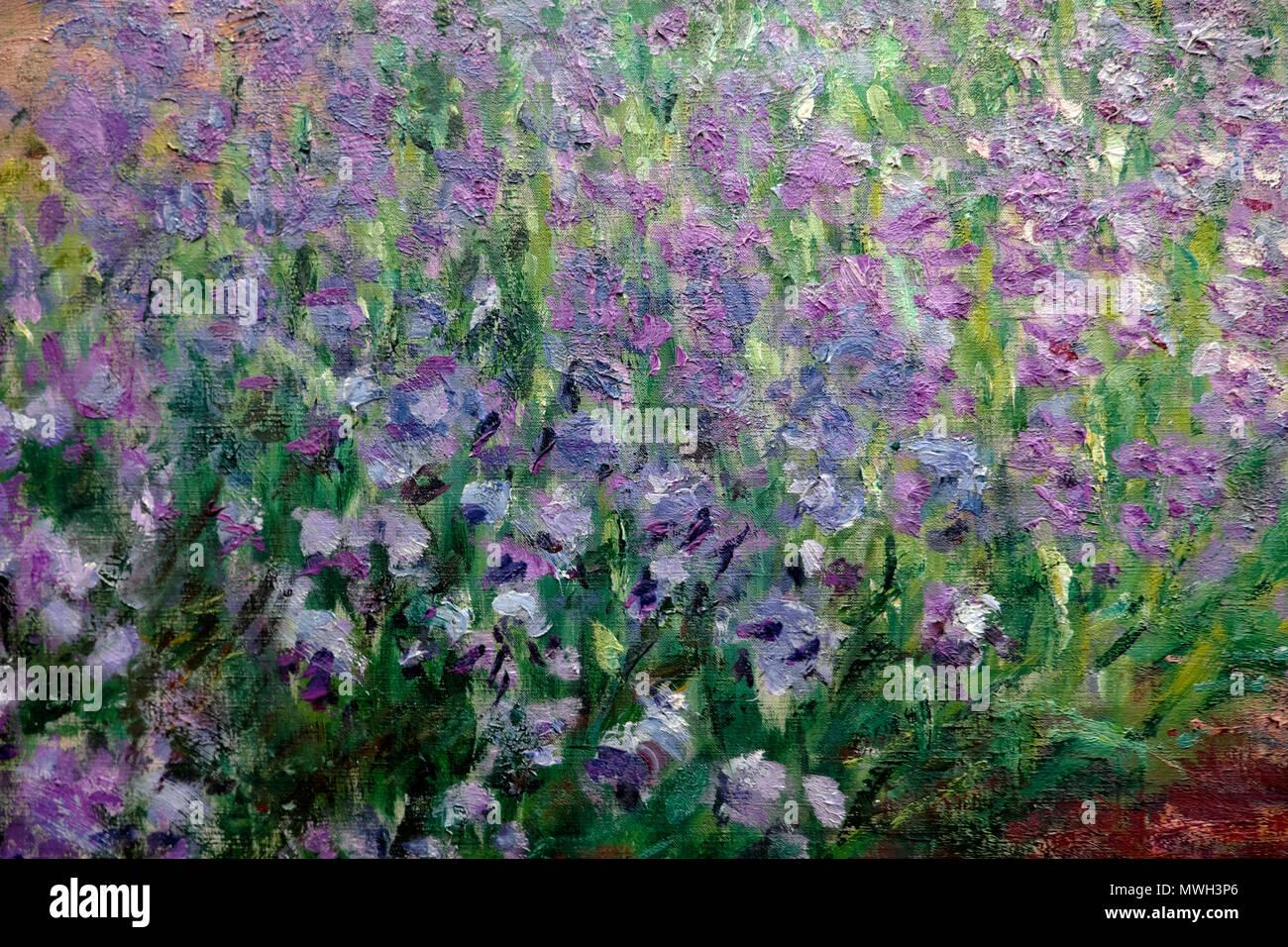 Detail Of Claude Monet Purple Irises Iris Flower Painting Le